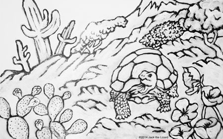 Coloring Pages of Desert Tortoise