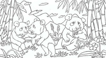 Coloring Pages of Madagascar Color