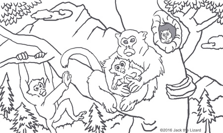 Coloring Pages of Golden Snub-nosed Monkey