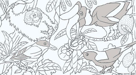 Coloring Pages of Malaysian Birds