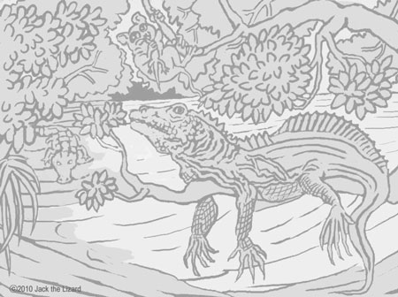 Coloring Pages of Philippine Sailfin lizard