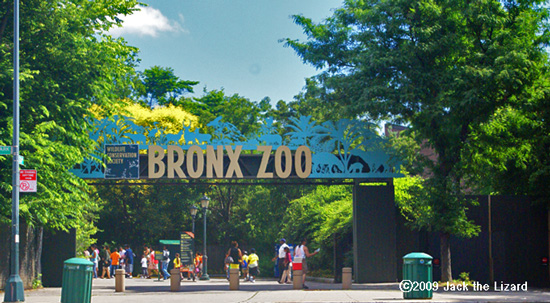 Asia Gate, Bronx Zoo
