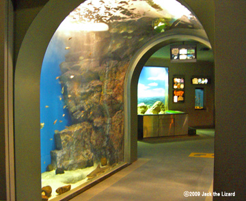 Tunnel Aquarium, Port of Nagoya Public Aquarium