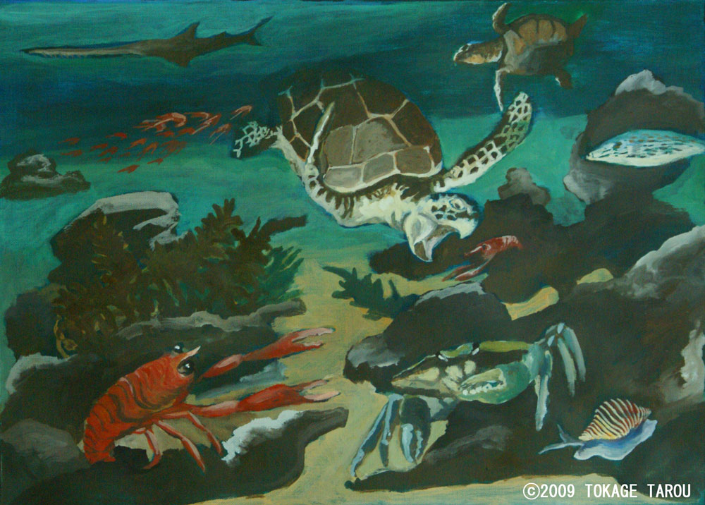 Loggerhead Sea Turutle, crabs, fish, invertebrate
