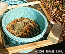 Frogs are hibernating in this pail. Tama Zoo