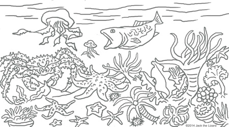Coloring Pages of Colorful Cold Water