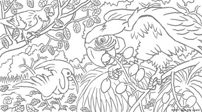 Coloring Pages of the Macaws