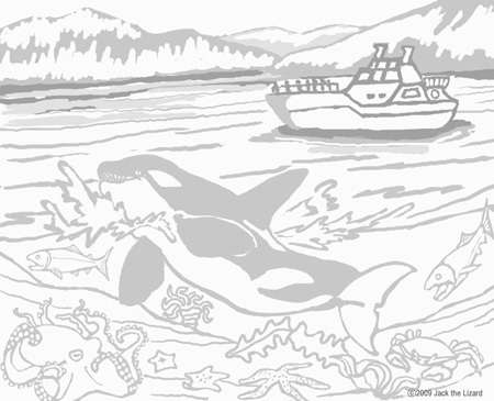 Coloring Pages of Orca