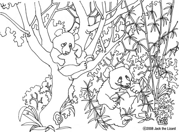 Colouring Page of Giant Panda