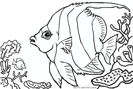 Coloring Pages of Pennant Coralfish