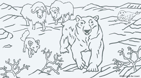 Coloring Pages of Polar Bear
