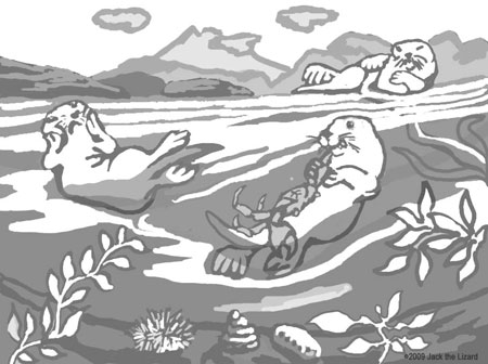 Coloring Pages of Sea Otters